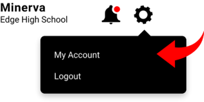 Pull Up My Account